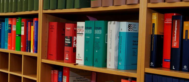 לימודי תואר ראשון: חשיבות קריאת הספרים הנכונים
